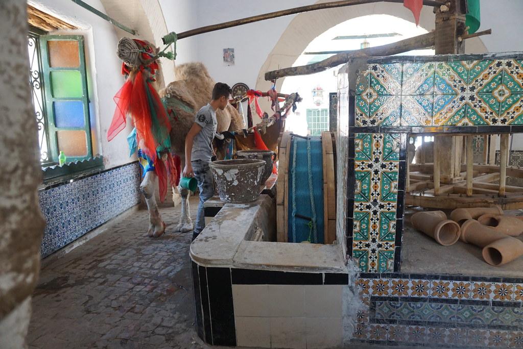 kairouan bir birouta tunisia