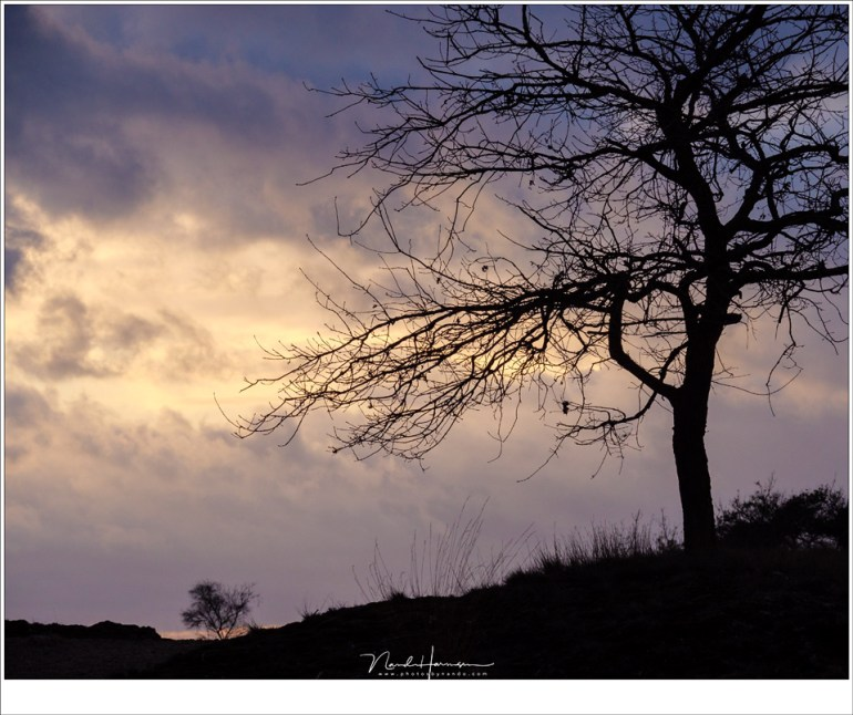 Kleurige wolken aan de horizon, vlak voor zonsondergang, komen vaak indrukwekkender in beeld met een tele objectief. (100mm   ISO500   f/11   1/250)