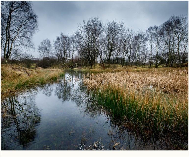 Een prachtige en rustige poel ergens ver van de verharde paden (16mm | ISO1600 | f/11 | 1/125)