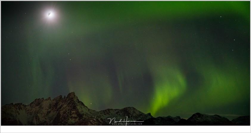 Het Noorderlicht laat zich niet weg jagen door het maanlicht (55mm | ISO3200 | f/2,8 | t=2 sec), Lofoten in de nacht