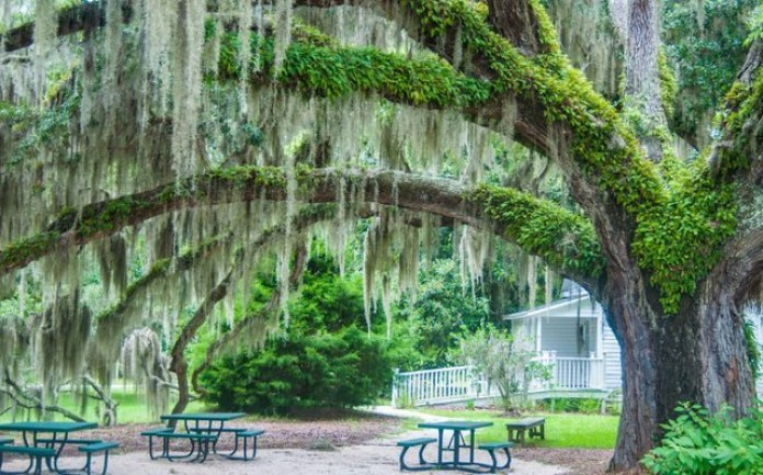 places to visit in south carolina