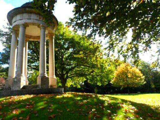 top 50 places to visit chelmsford