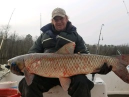 Man holding large grass carp. An invasive species in Maryland.