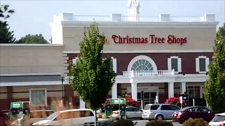 28 Christmas Tree Shops Lancaster Pa Delancey Trees San Francisco
