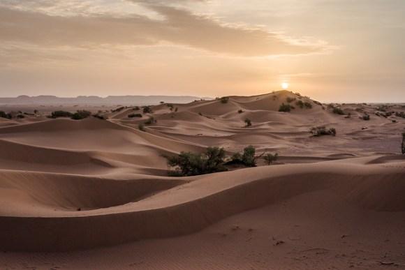 Berber's Sandbox