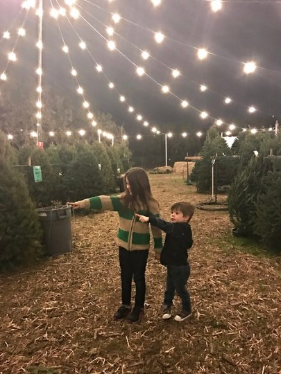 at the tree lot