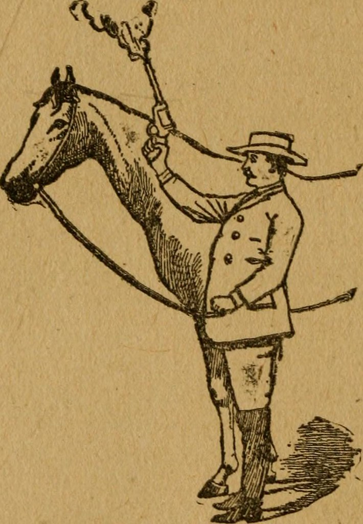 "Image From Page 179 Of ""Gleason's Horse Book The Only Aut Flickr"
