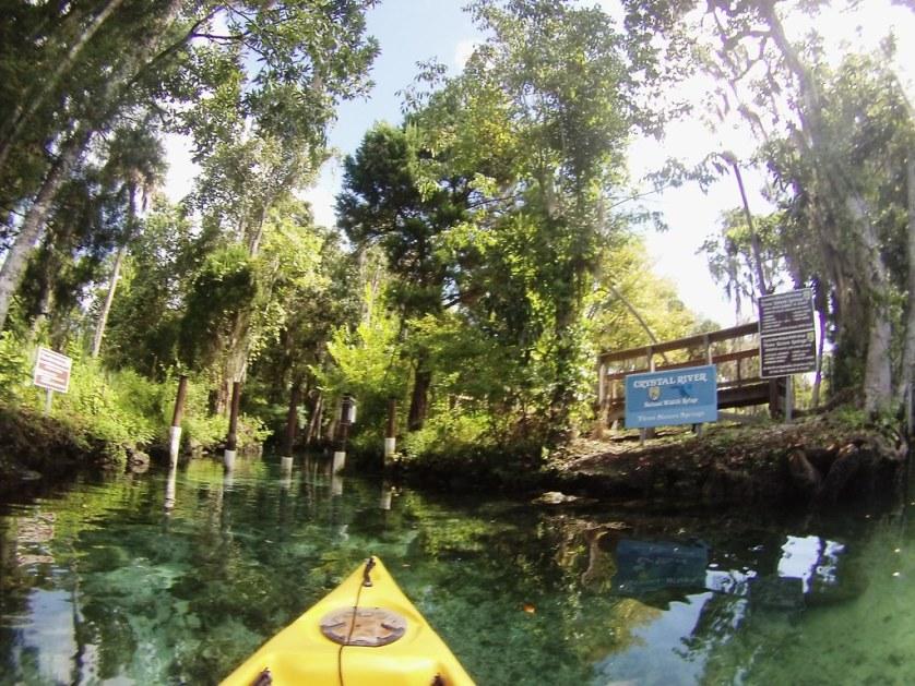 Kayaking Three Sisters Springs, Crystal River, Fla, Sept. 12, 2014