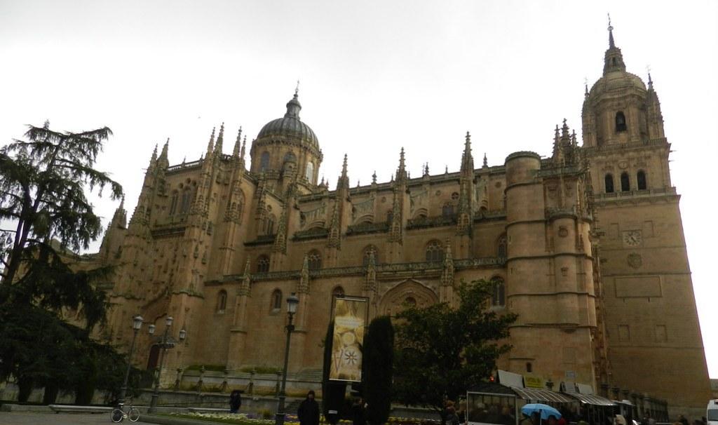 Fachada norte de la Catedral Nueva de Salamanca 03