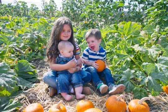 let me tell you why pumpkins rule