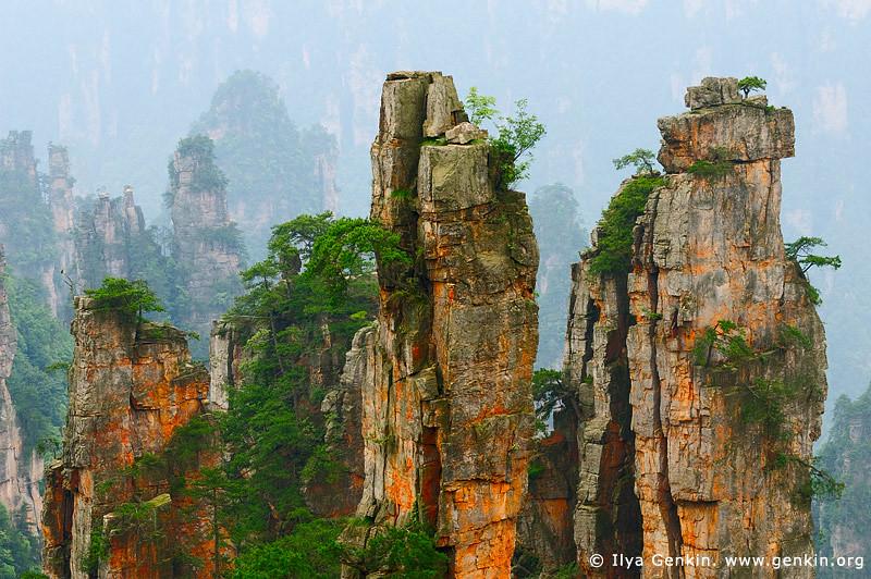 Stone Pillars in Zhangjiajie Tianzi Mountain Nature Reser