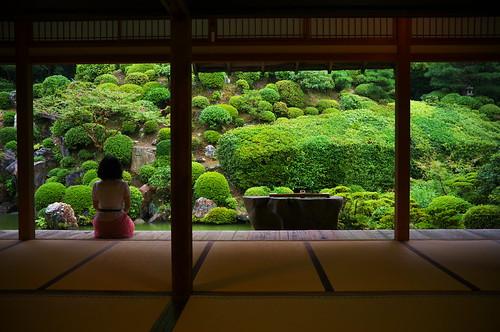 just watching the rain falls Tisyakuin temple Kyoto