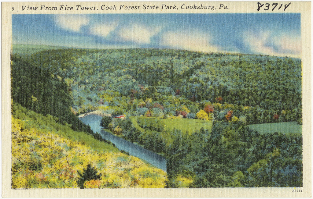 View of Fire Tower Cook Forest State Park Cooksburg Pa