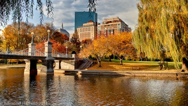 Beautiful fall morning in Boston Public Garden IMG3995