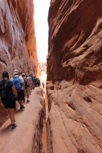 Fiery Furnace: Walk by the wall