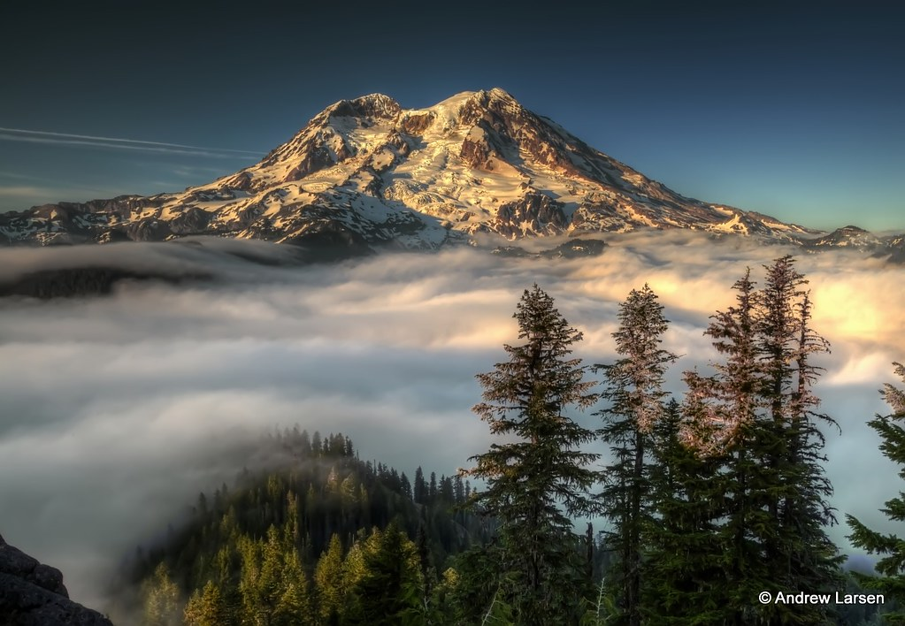 The Mountain from Gobblers Knob in Mt Rainier National Pa