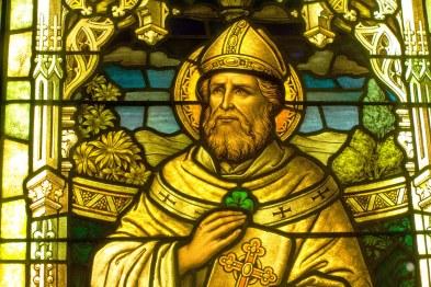 Image result for saint patrick