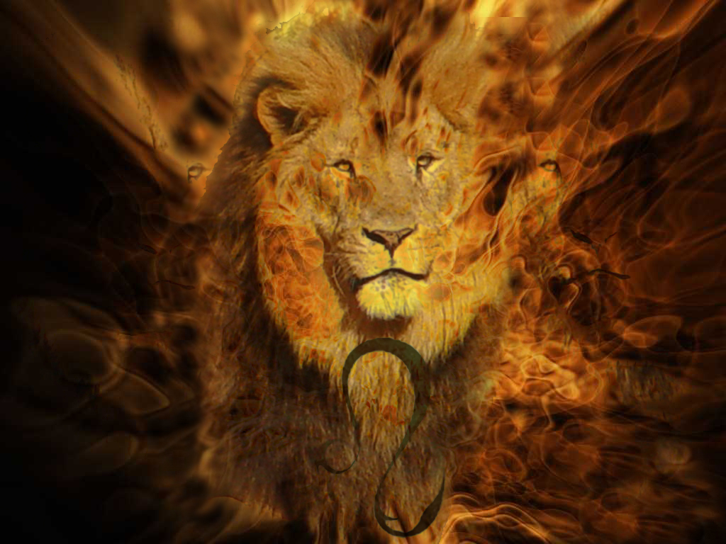 Fire Lion Leo  Kenyell Walker  Flickr