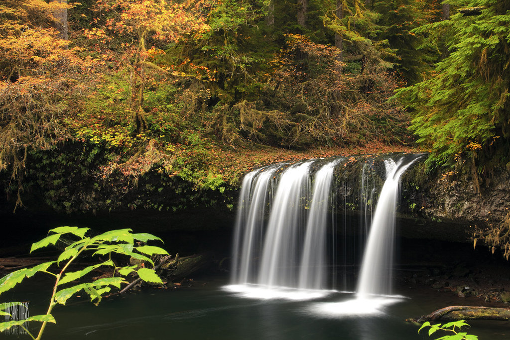 Fall Hunting Wallpaper Upper Butte Creek Falls I Entered A War Zone To Catch