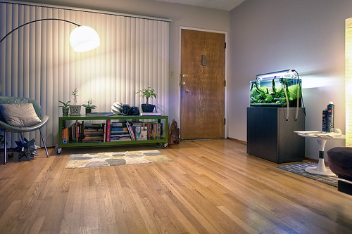 60cm Nature Aquarium layout at home