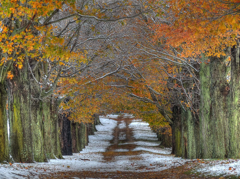 Country Fall Wallpaper Snowy October Morning In Millstone Just Off Of Sweetmans