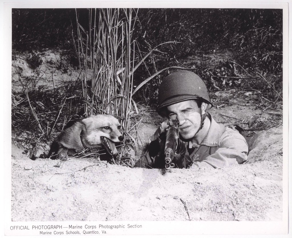 FoxHole Buddies 14 October 1943  A Marine can share my   Flickr