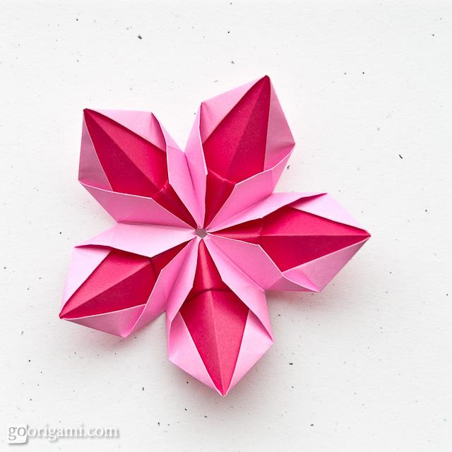 Origami Flower Origami Flower Tomoko Fuse Squares 5