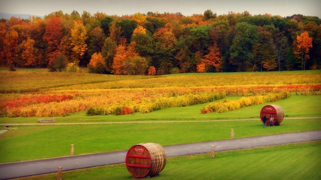 Free Fall Wallpaper For Pc Autumn Landscape Autumn Landscape Glenora Wine Cellars