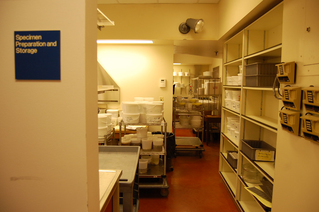 Specimen preparation and storage room in the Vancouver Gen