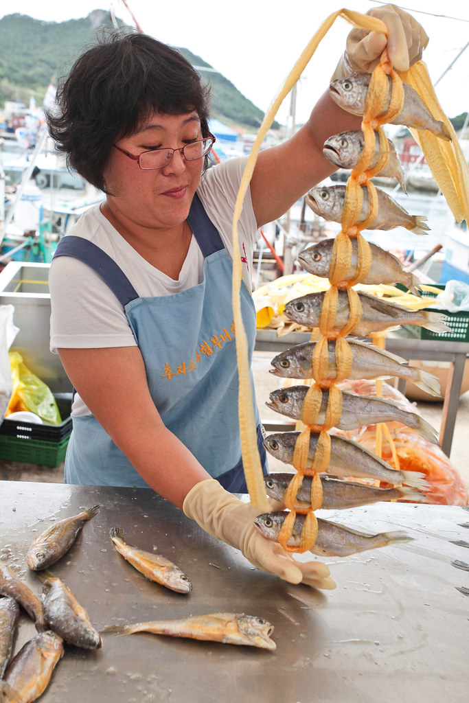 Chuja Island Yellow Corvina Fish festival 12  CHUJA ISLAND   Flickr
