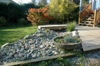 Daryl's dry river rock garden