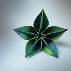 Carambola Flower Origami Diagram 2004 Mustang Alternator Wiring Carmen Sprung In The Prien S Stadl A Flickr Roda By Rui