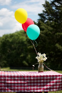 Picnic Party Decorations
