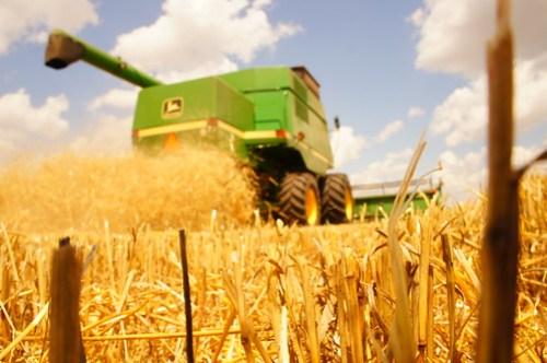 Emma: Oklahoma harvest 16