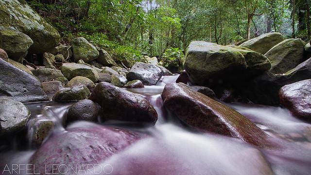 Papaya River