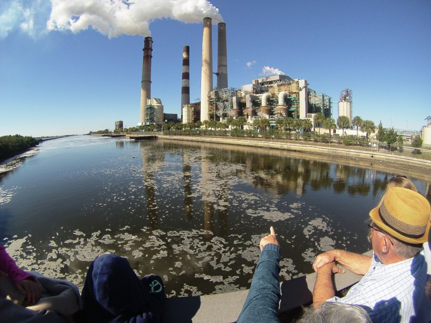 Manatee Viewing Center - TECO Tampa Electric, Apollo Beach, Fla., Nov. 28, 2014