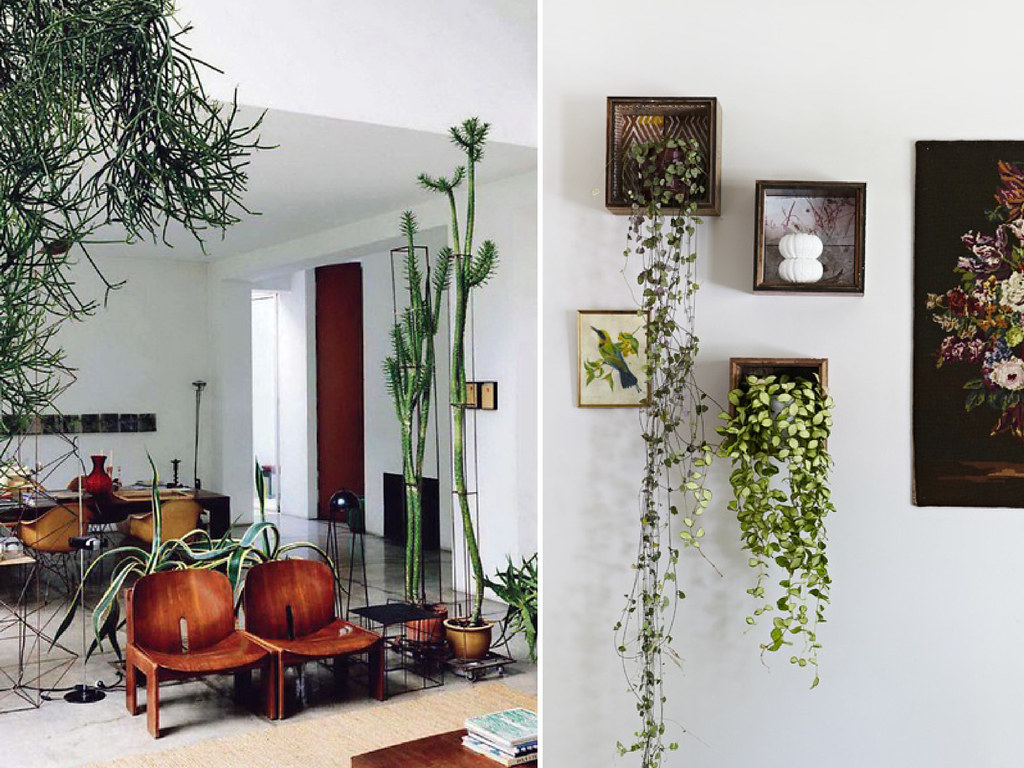 artificial house plants living room white chair diy home indoor plants6 | collated by geneva vanderzeil, a ...