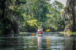 Lowcountry Unfiltered at Okefenokee-157