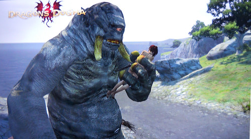 Dragons Dogma Cyclops Battle 02 My Arisen And Main Pawn D Flickr