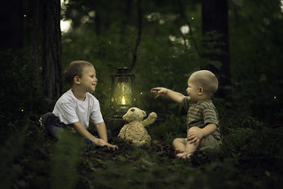 Brothers Catching Fireflies My Two Boys Having Fun