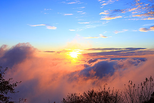 DW01512--嘉義縣--阿里山夕陽雲海--阿里山雲海   吳志學   Flickr
