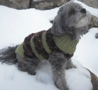 Hand Knit Dog Sweaters - Small to Medium Breed with Fancy ...