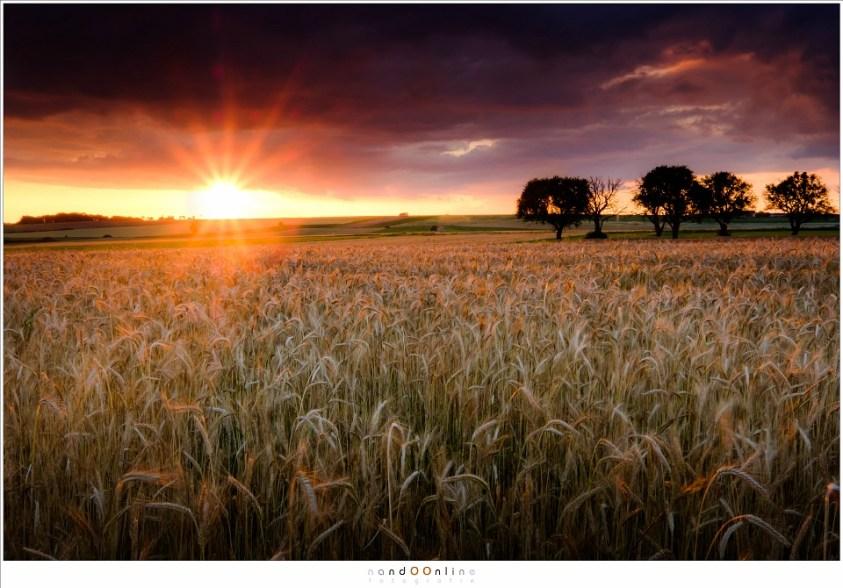 Zonsondergang, de momenten dat het dynamisch bereik van een camera op de proef wordt gesteld. Maar grijsverloopfilters helpen een handje