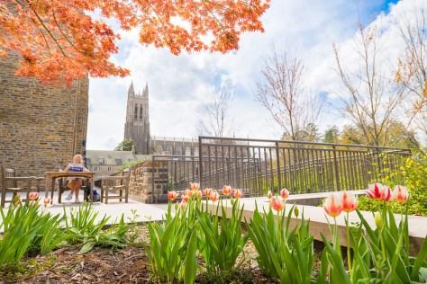 Durham Duke Gardens