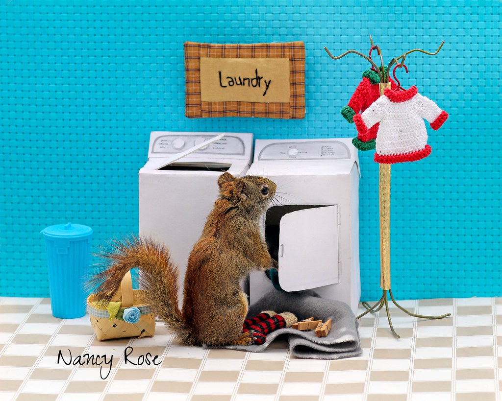 Laundry Day Again Trying To DecideI Am Going To Make