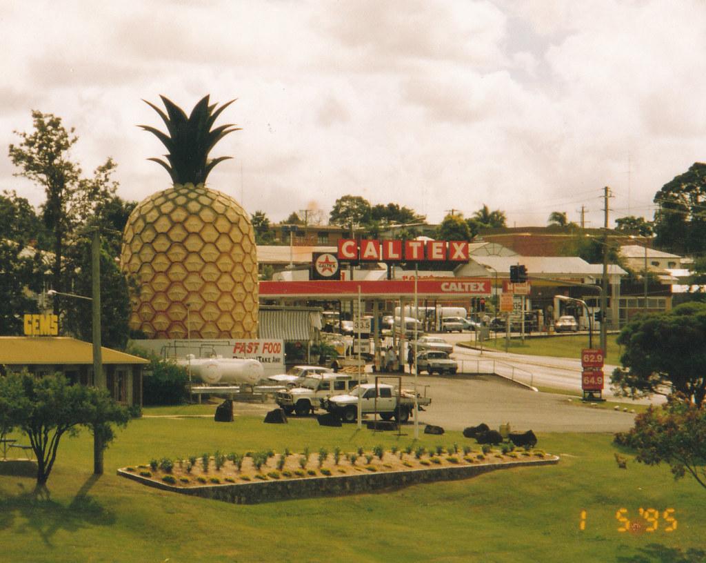 Big Pineapple de Gympie