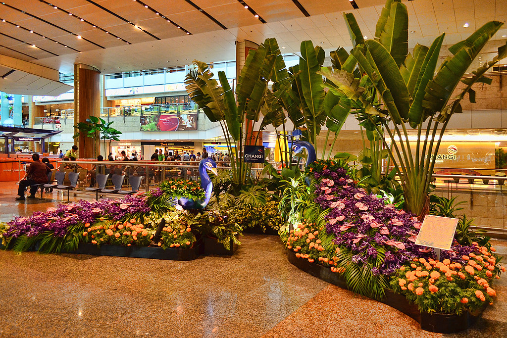 Changi Airport  Decorations of the floral peacocks