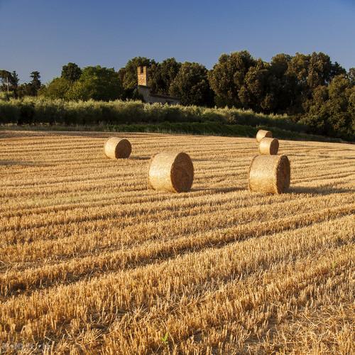 Paesaggio rurale 08 Quad  Rural landscape 08 Sito ufficiale  Flickr