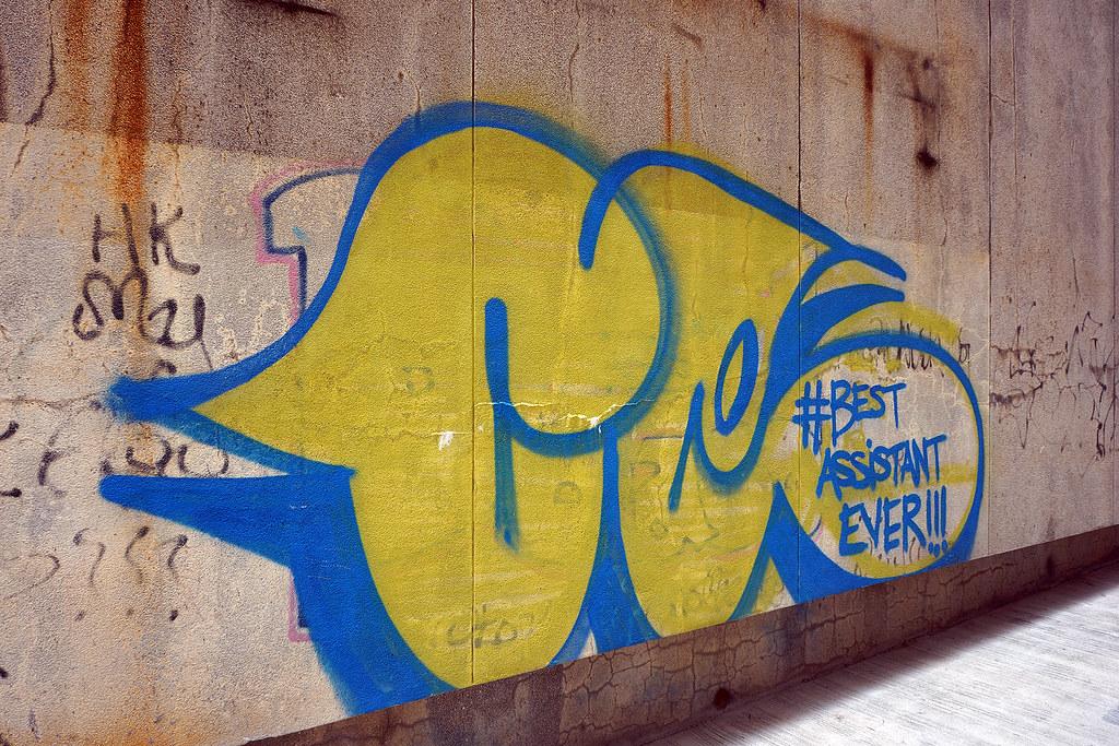 Best Assistant Ever HK Street Art Amp Graffiti Around Kow