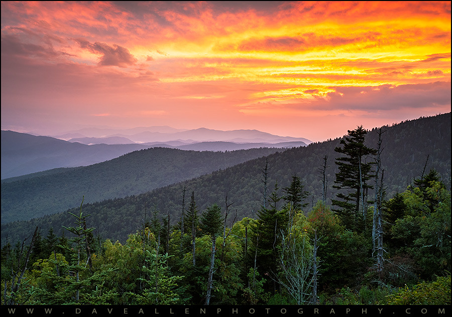Panoramic Wallpaper Fall Clingmans Dome Great Smoky Mountains Purple Mountains Ma